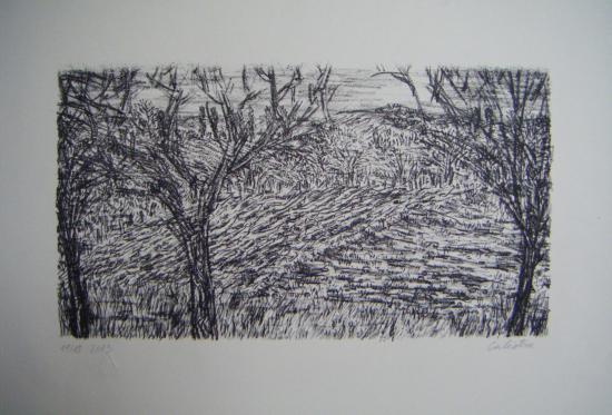 Jean-Baptiste Calistru - Lithographie - Paysage - Champs labouré